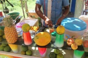 Fruit juice entrepreneur